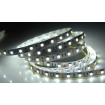 LED Лента 6000k 5050smd, 60Led/m, 14,4W/m, 1200 Lm, IP20, 12V Premium