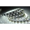 LED Strip 6000k 5050smd, 60Led/m, 14,4W/m, 1200 Lm, IP20, 12V Premium