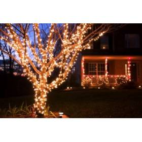 Led outdoor Christmas lights PROF 100Led 10m IP65 Warm white